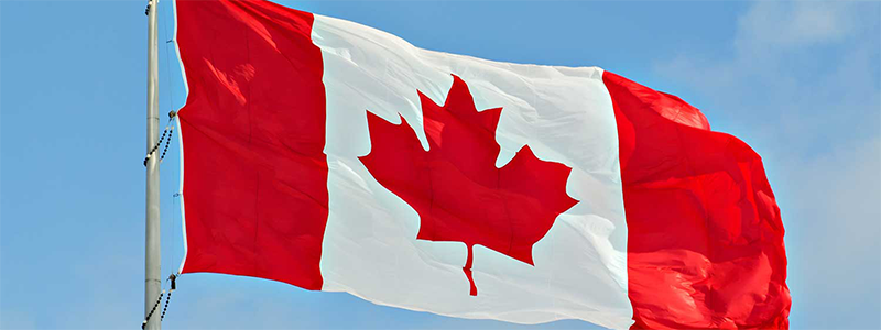 Canadian flag blowing in sky