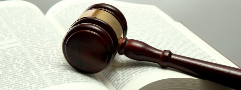 Gavel placed on tort law book